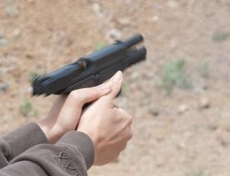 Guns and the Teacher-Student Dynamic