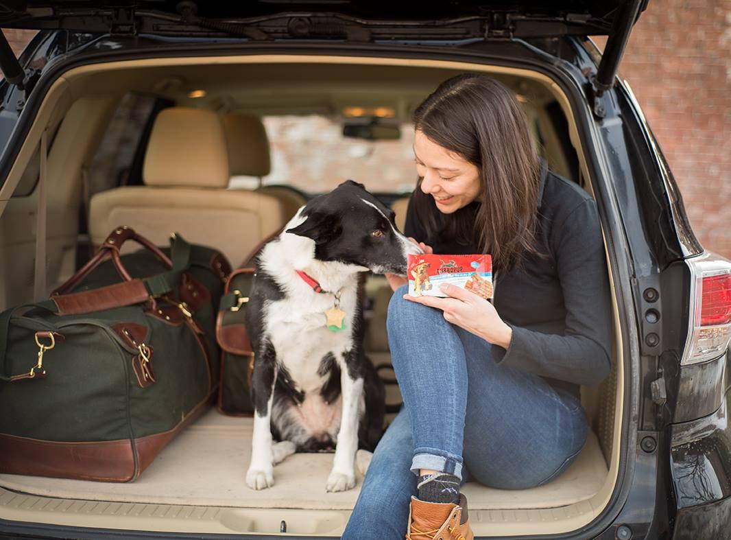 TurboPUP – Veteran pet supply – food business