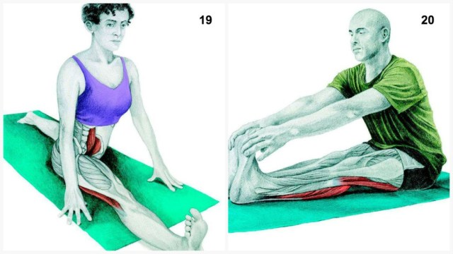 The-Art-of-Stretching-10