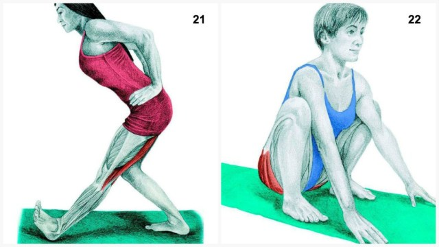 The-Art-of-Stretching-11
