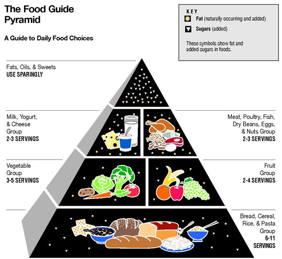 https://i2.wp.com/www.womenfitness.net/img2013/programs/food-pyramid.jpg