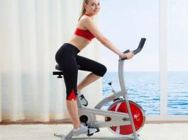 What Is The Best Exercise Bike For a Very Tall Person?, best spin bike for tall guy, recumbent stationary bike for tall person, exercise bike for 6ft person, best recumbent exercise bike for tall person, sunny health & fitness sf-b1516 commercial indoor cycling bike, spinner sprint, spinner sprint premium authentic indoor cycle, best exercise bike for short person,