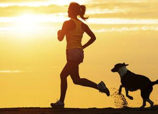 5 Best Exercises to Do with Your Dog, dog and owner workout, how to exercise your dog inside, exercise with your dog classes, dog exercise program, dog exercises to build muscle, work out with your dog, home workouts with your dog, how to tire out a dog quickly,