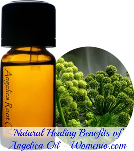 Natural benefits of angelica oil