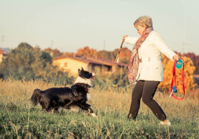 How Pets improve our health