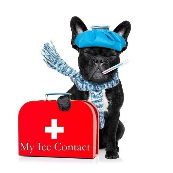 P is for Protect Yourself Put ICE on your mobile device