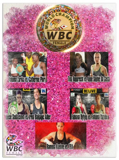 December 2nd: A Day of WBC Championships