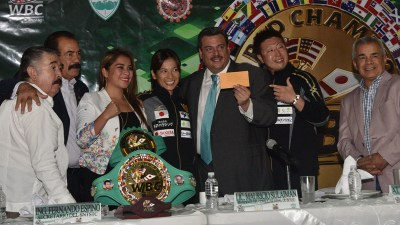 Nana Yoshikawa Makes Generous Donation Towards Mexico Earthquake Recovery; then WBC Matches Donation