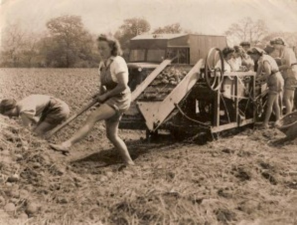 Talgarth Land Girls out in the fields Source: Tony Price