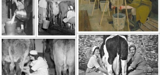 January Milking Collage