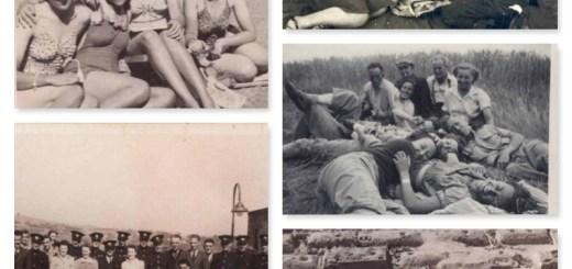 Picnics and Fun Collage
