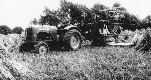 Emma Chapman working reaper-binder at Walnut Farm, Newport Pagnell, August 1941
