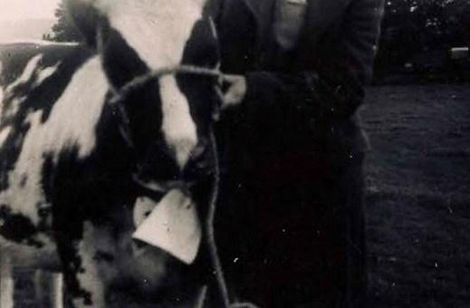 Mollie Mitford