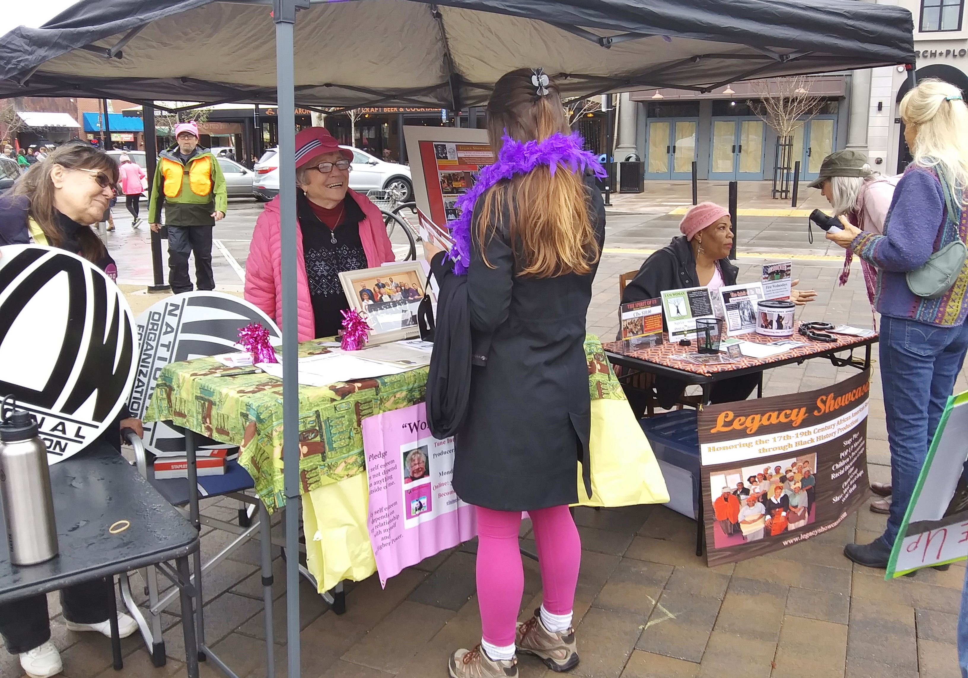 Santa Rosa Womens March and Rally booth NOW WS Legacy Showcase