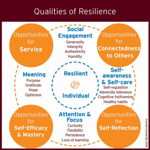 qualities-of-resilience_400