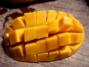 mango_hedgehog_518198