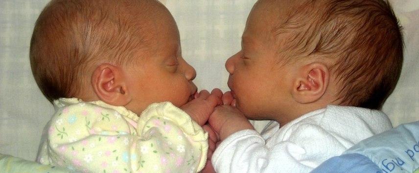 twins or triplets