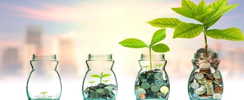 smart investment decisions