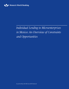 Individual Lending to Microenterprises in Mexico: A Survey of Constraints and Opportunities