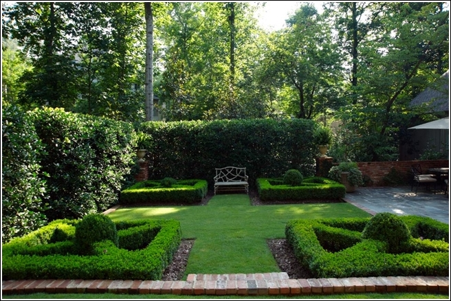 5 Reasons that you should be Growing Hedges