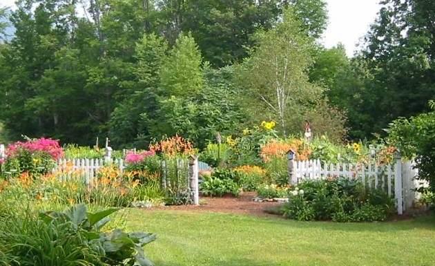 Top 10 Gardening Mistakes