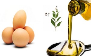 egg and olive oil