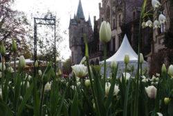Wohnmobilfahrt zum Gartenfestival auf Schloss Ippenburg