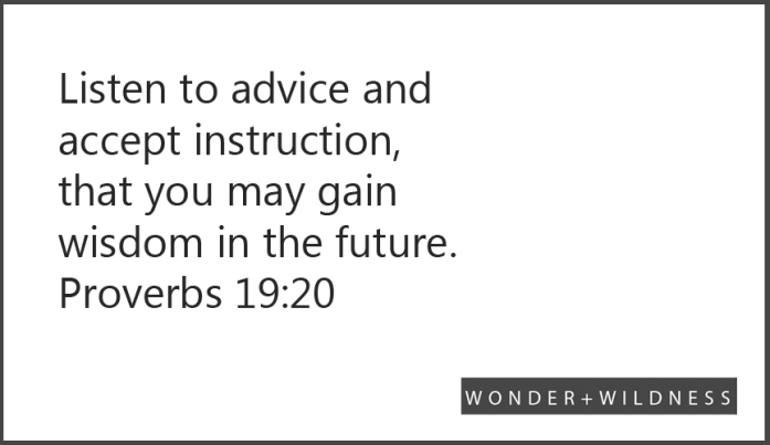 Listen to advice and accept instruction, that you may gain wisdom in the future.