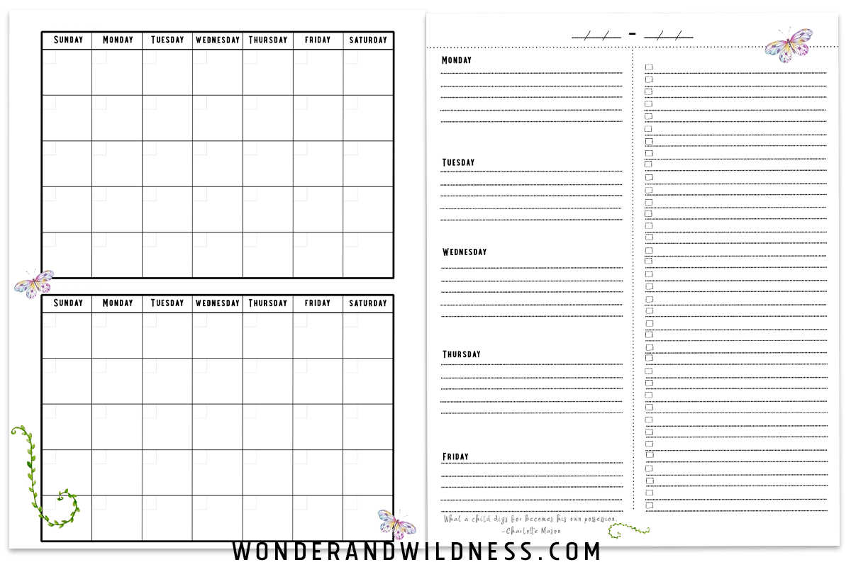 photograph relating to Printable Homeschool Schedule named Printable Homeschool Planner Webpages Surprise + WILDNESS