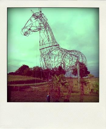 chevaljour-pola
