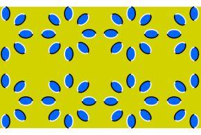 Cute optical eye illusions