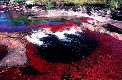 river of five colors colombia