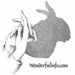 Finger Art Rabbit