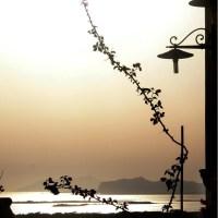 Cantine Fina: a Marsala non si beve solo Marsala