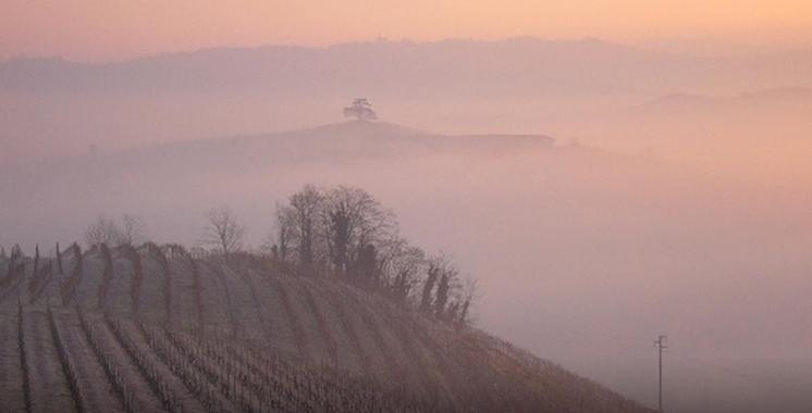 Terre del Barolo - Paesaggio con nebbia