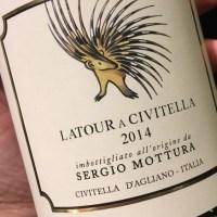 Sergio Mottura: il vantaggio di essere piemontese