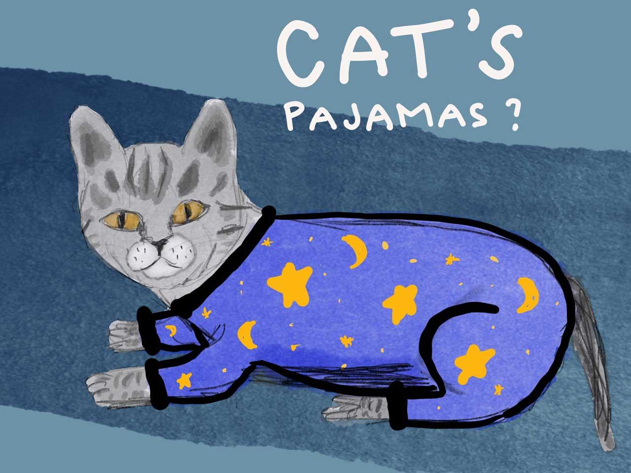 2am at the Cat's Pajamas