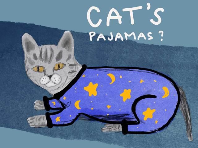 Cat in Pajamas