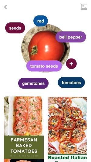 Pinterest Lens Search Food