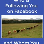 How To See Who Is Following You on Facebook and Who You're Following