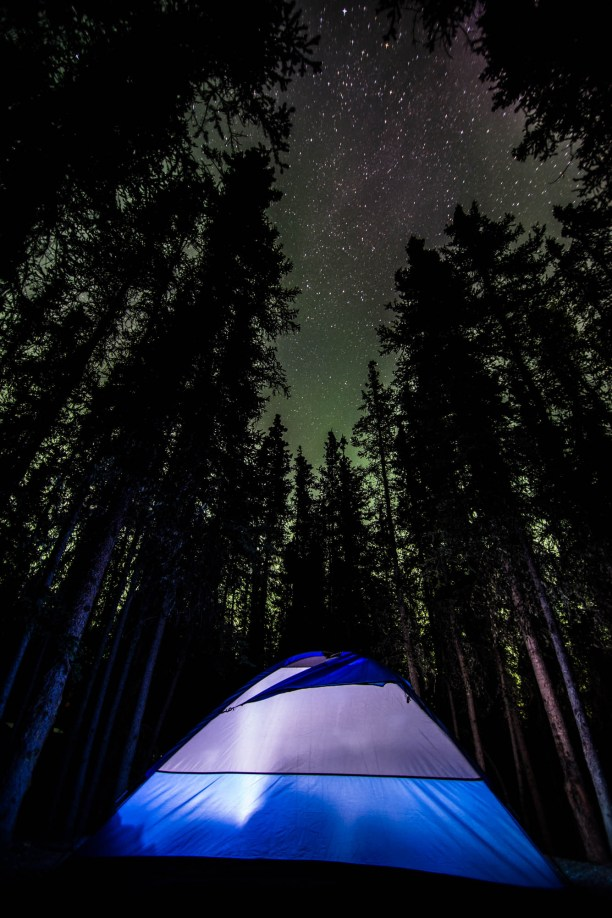 A blue tent is illuminated from inside as a faint green glow from the Northern lights is seen among the tree tops.