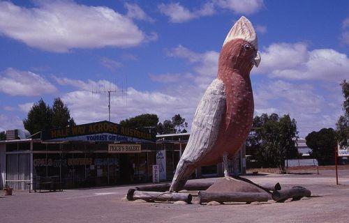 10 Most Fascinating Big Things of Australia