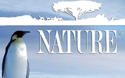 Highest Rated Wildlife Documentaries