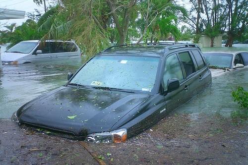 Hurricane Wilma damage