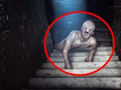 Most Terrifying Creatures Ever Found