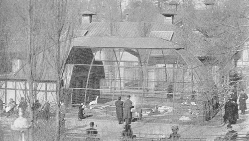 Central Park Zoo Escape Hoax