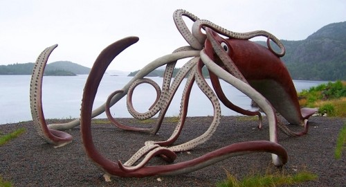 Colossal squid underwater creatures