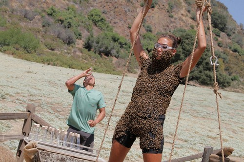 fear factor woman fully covered bees