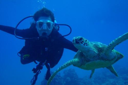 Scuba Diving Most Dangerous Sports