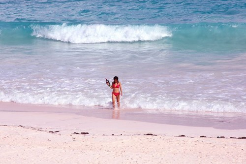 Pink Beaches of Harbor Island